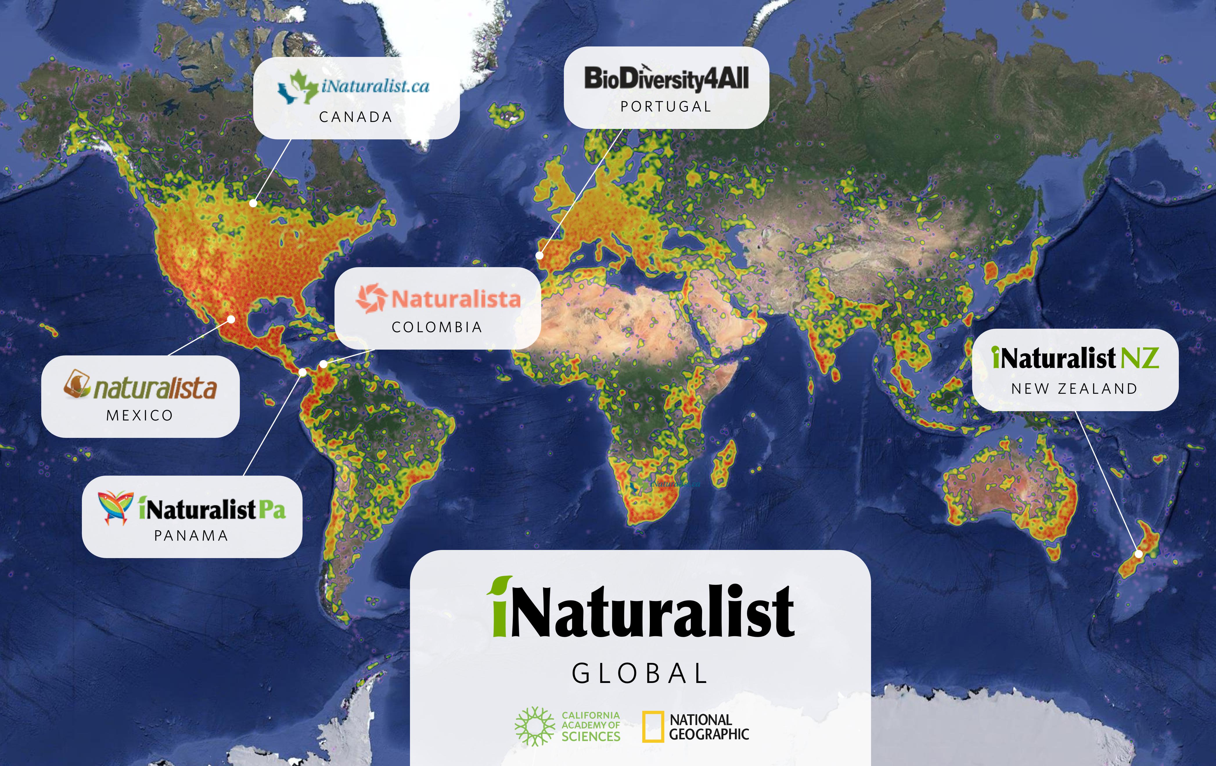 iNaturalist Network · BioDiversity4All