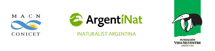 Logos organizadores: Museo Argentino de Ciencias Naturales, ArgentiNat iNaturalist Argentina, Fundación Vida Silvestre Argentina